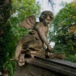 anioł cmentarz rakowicki