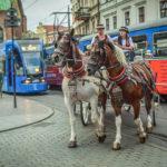 andrus i inne krakowskie regionalizmy